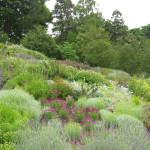 Trip to Ness Gardens 2015